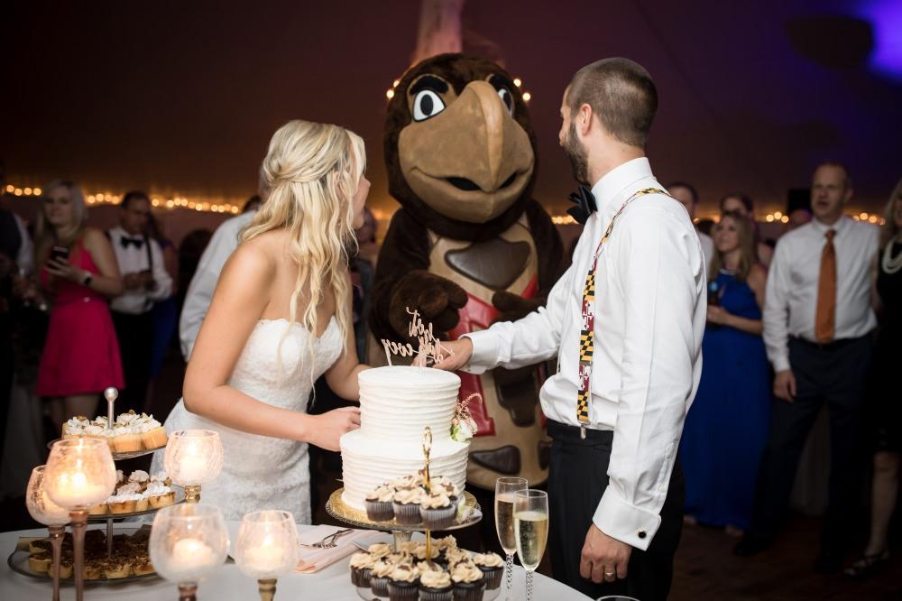 Adam and Ally's Wedding_Reception532
