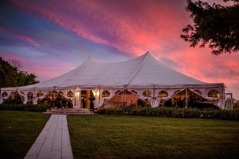 Adam and Ally's Wedding_Reception855